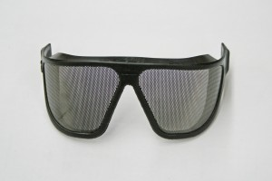 Forestry saftey glasses